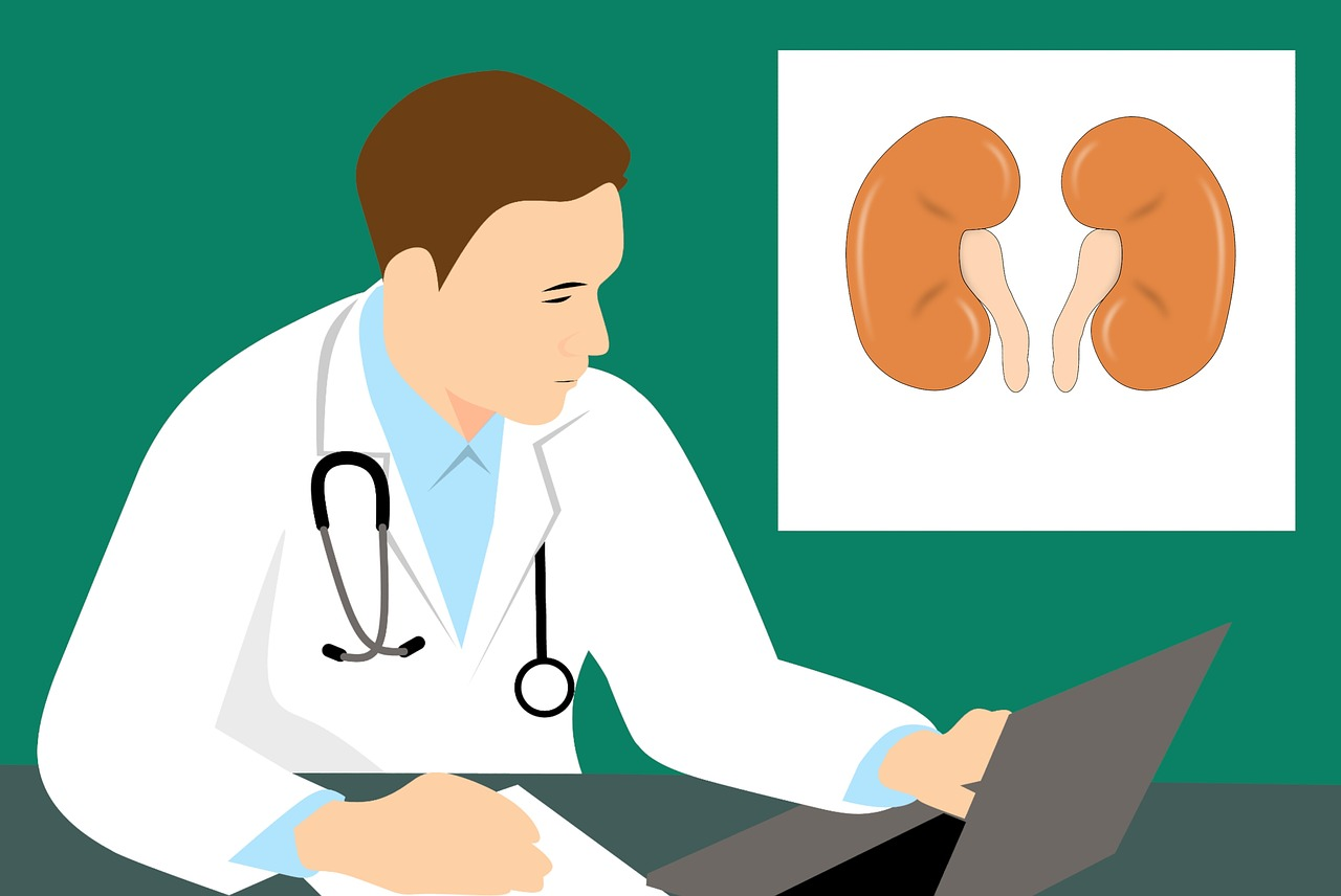 Kidney Doctor Illustration